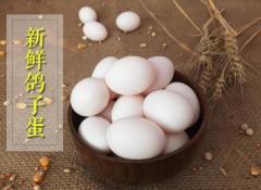 鸽子蛋孕妇可以吃
