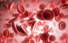 鉴究血色素低的造成原因及食疗方法