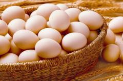 鸡蛋壳有什么用其用途涉及广泛